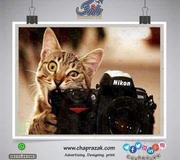مفاهیم پایه عکاسی